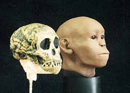 The Taung Child