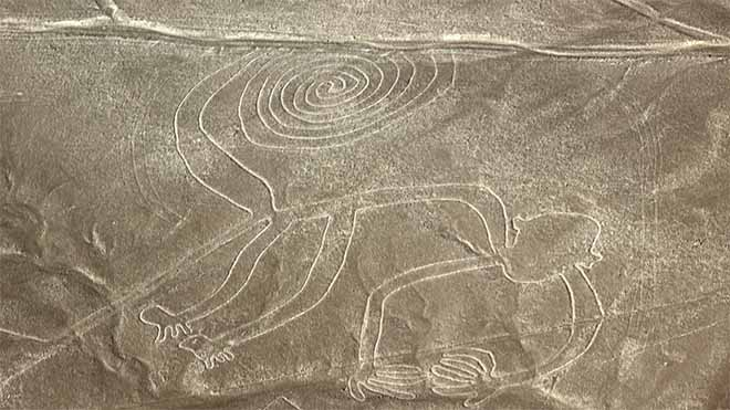 The Monkey - Nazca Lines